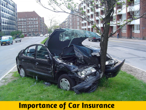 You, Me And Car Insurance: The Truth