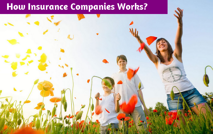 how insurance companies works